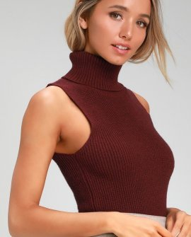 Alexandra Burgundy Sleeveless Turtleneck Sweater Top