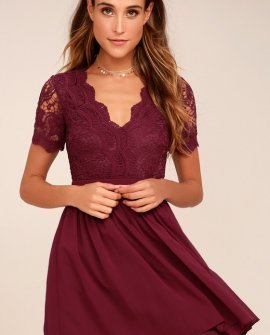Angel in Disguise Burgundy Lace Skater Dress