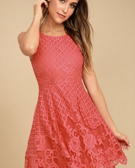 Black Swan Desirae Coral Pink Lace Skater Dress