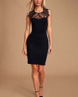 Classy Night Black Lace Backless Bodycon Mini Dress