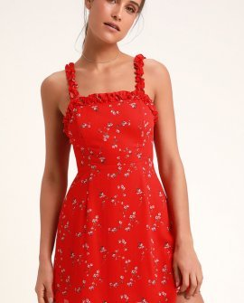 In the Garden Red Floral Print Skater Dress