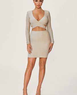 Celeste Shimmer Wrap Mini Dress