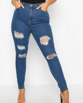 Plus Distressed Skinny Jeans