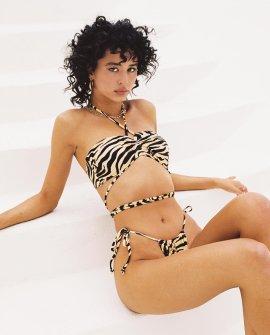 Recycled Nylon Ashleigh Bikini Set Brown Black