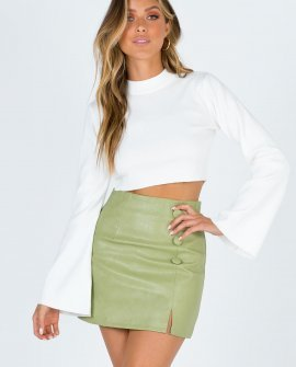 Clayton Mini Skirt