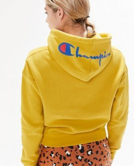 Champion UO Exclusive Hood Logo Hoodie Sweatshirt